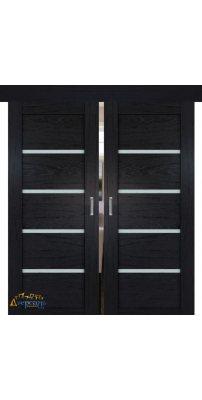 Двойная раздвижная дверь 2.09XN даркбраун, стекло матовое