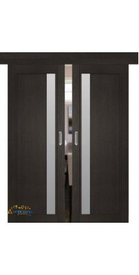 Двойная раздвижная дверь 2.71XN даркбраун, стекло матовое